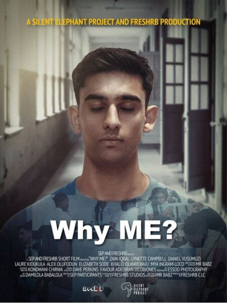 Silent Elephant Project (SEP) short film - Why ME?